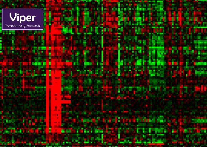 Cancer Bioinformatics and HPC. The heatmap represents expression levels of 100 genes in 168 samples obtained from 11 different types of cancer. The heatmap uses colours to represent numerical values, the colour range is from red (high expression values) over black to green (low expression values) tones. By Dr. Leonid Nikitenko (University of Hull) and Dr. Stephen Henderson (University College London).